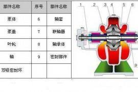 红雁家用型增压泵的内部结构